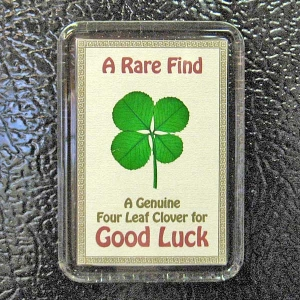 BAD LUCK IF A 5 LEAF CLOVER  SUPERSTITION OR NOT