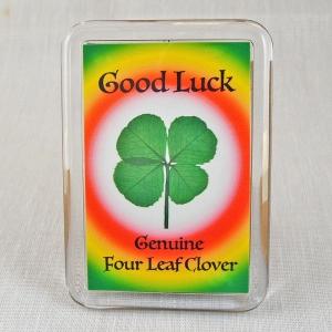 Four Leaf Clover Good Luck Fridge Magnet