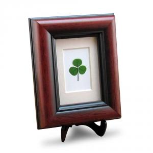 Mahogany Frame with a Genuine Shamrock and Irish Blessing