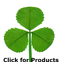 3 Clover Image