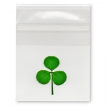 Shamrock in Cello Sleeve