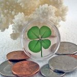 Four Leaf Clover Good Luck Pocket Token