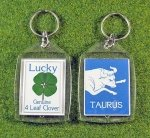 four leaf clover zodiac key tag