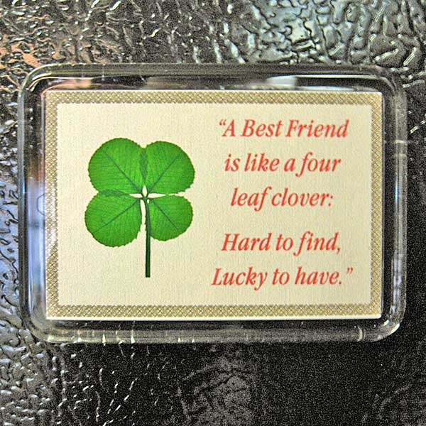 Real Four Leaf Clover Best Friend Fridge Magnet